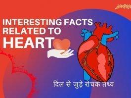 दिल से जुड़े रोचक तथ्य